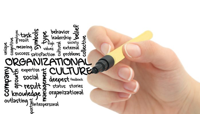 How do you know a company's culture fits your needs and personality?