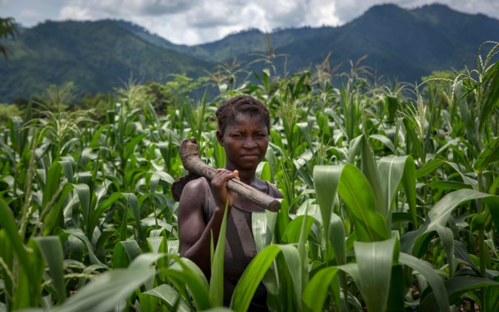 What are the causes of world hunger and are there ways to banish it?